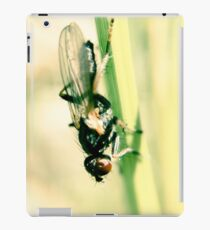 Red eyed fly on a hay iPad Case/Skin