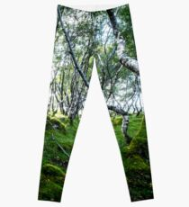 Green Forest Leggings