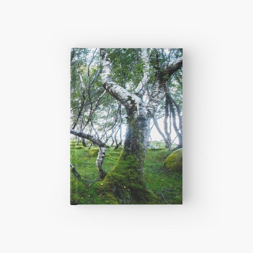 Carnet cartonné «Green Forest»