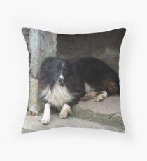 Inishowen Fauna - Border Collie Throw Pillow