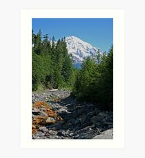 Mt. Rainier at Kautz Creek Art Print
