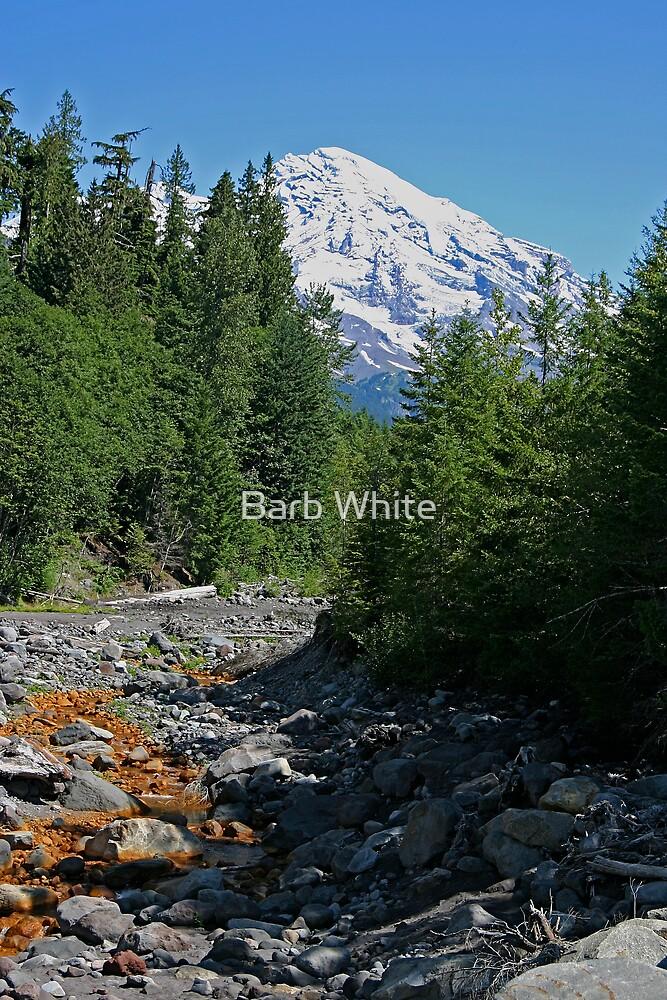 Mt. Rainier at Kautz Creek by Barb White