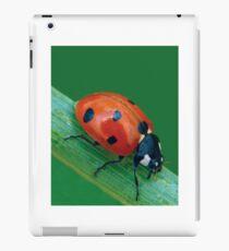LADYBUG 30 iPad Case/Skin