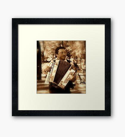 Street musicant Framed Print