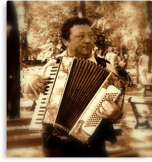Street musicant by Sorin  Reck