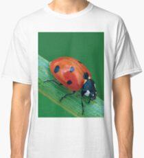 LADYBUG 30 Classic T-Shirt