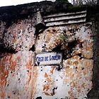 Antigua Guatemala  by Moniquitacute