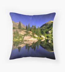 Beaver pond Throw Pillow