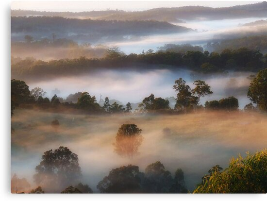 """'Dawns Touch"""" by debsphotos"""