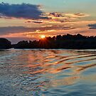 Sunset on Danube  by Lanis Rossi