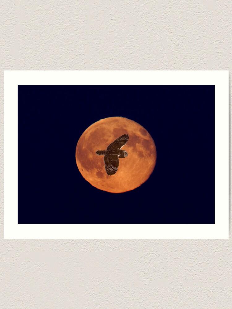 Alternate view of Moon Lighting Art Print