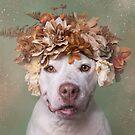 Flower Power, Jonas by SophieGamand