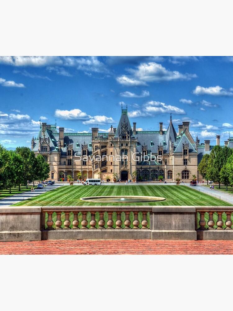 The Biltmore Estate  by venny