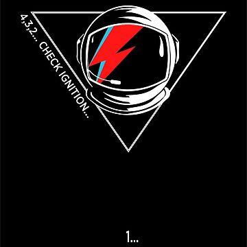 Tribute to David Bowie...Major Tom by AliceChaine