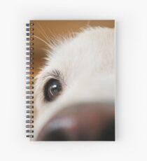 Fluffy Tetriever Close up Spiral Notebook