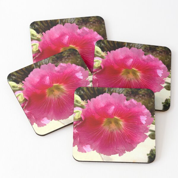 Hollyhock from A Gardener's Notebook Coasters (Set of 4)