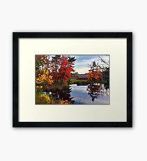 Fall on Waverley Road Framed Print