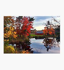 Fall on Waverley Road Photographic Print