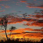 Simpson Desert Sunrise von A1000WORDS