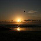 Calm Fraser Sunrise... von A1000WORDS