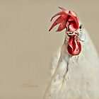 Will The Real Foghorn Leghorn Please Stand Up And Crow! by CJ Anderson