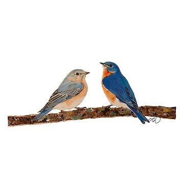 Bluebirds by portraitlady