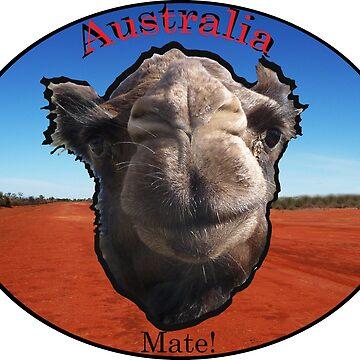 Australia by davidfraser