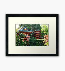 SF Japanese Tea Garden Study 21  Framed Print
