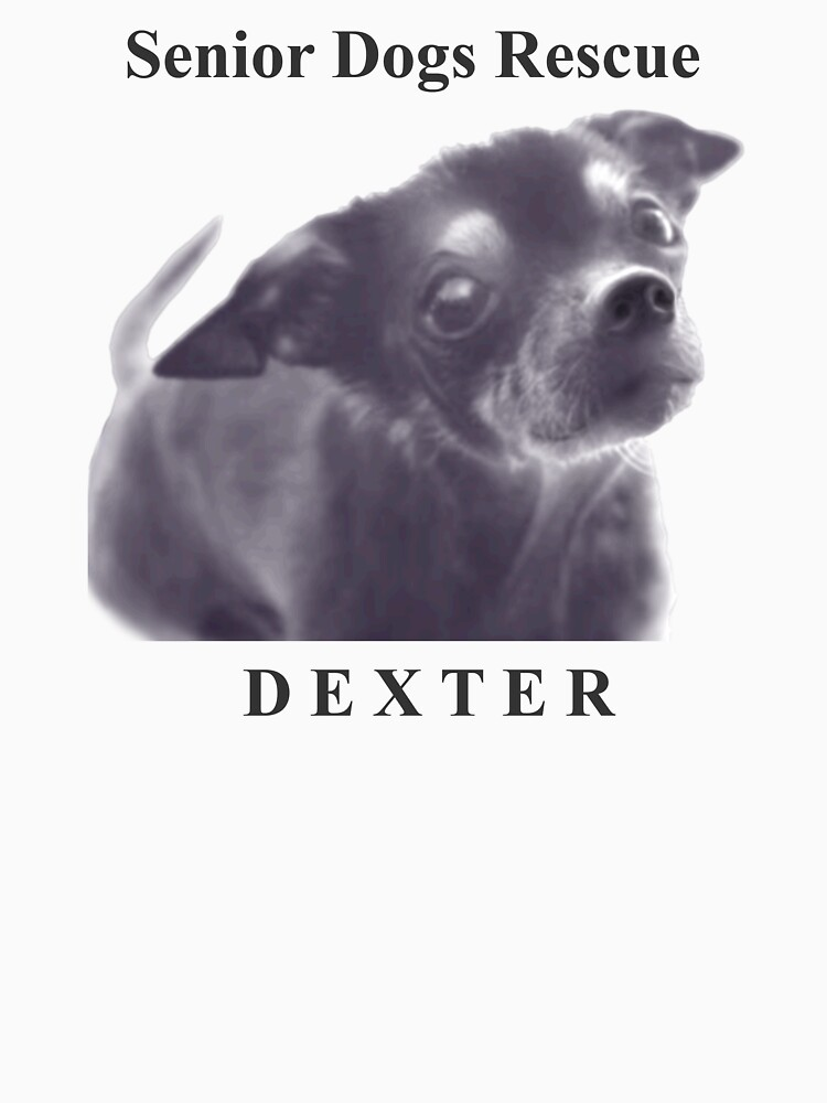 Dexter by SeniorDogs