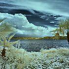 Tropical idyll by Mark Bangert