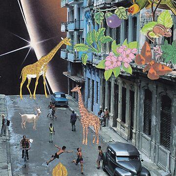 Havana by lerson