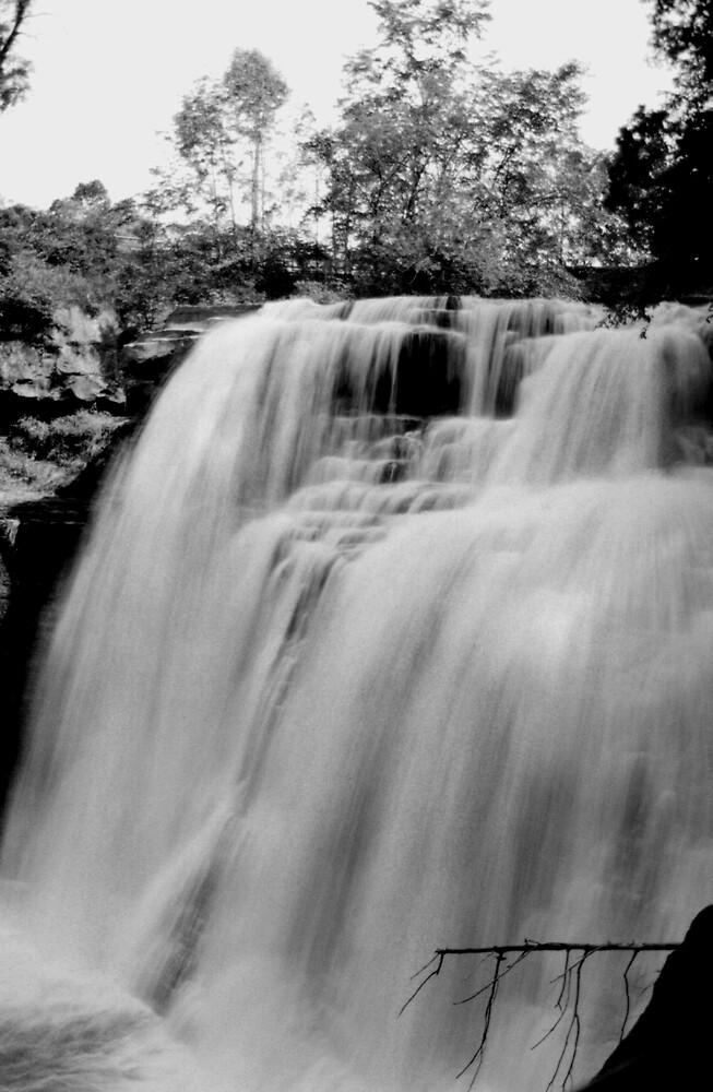 072106-15BW by MICKSPIXPHOTOS