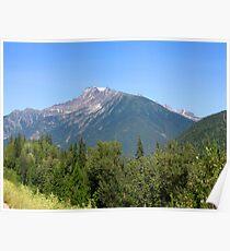 Mount Revelstoke Poster