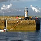 Smeaton's Pier and Lighthouse, St Ives by Rod Johnson