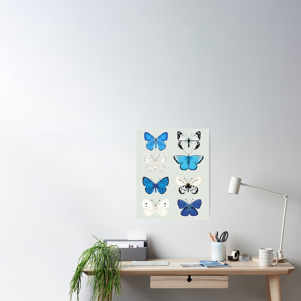 Lepitoptery No. 2 - Blue and White Butterflies and Moths Poster