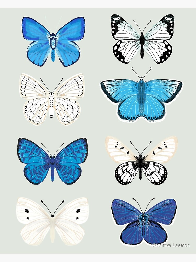 Lepitoptery No. 2 - Blue and White Butterflies and Moths by papersparrow