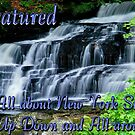 Challange New York Banner  by Jeff Lewis