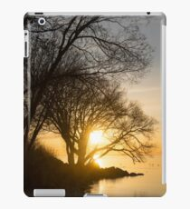 Early Gold Through the Willow Branches - A Sunrise on the Shore of Lake Ontario iPad Case/Skin