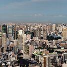 Tokyo Tower Japan at Dusk by worldwondering