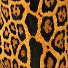 Faux Ocelot Skin Design by Digitalbcon