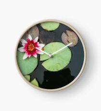 Pink Lily In Pond Overhead View Clock