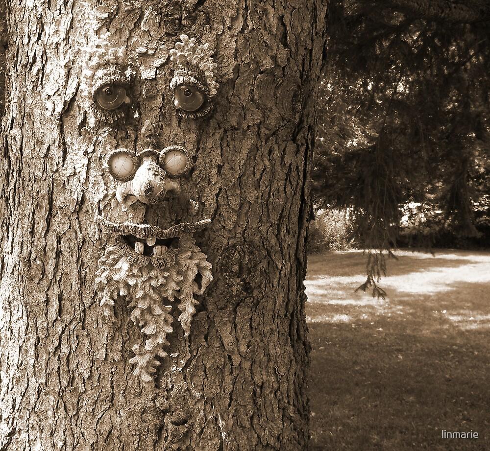 Tree Beard by linmarie