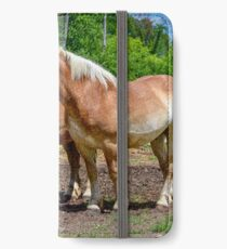 """Equine Duo"" iPhone Wallet/Case/Skin"