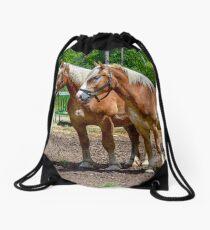 """Equine Duo"" Drawstring Bag"