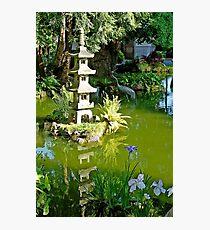 SF Japanese Tea Garden Study 24  Photographic Print