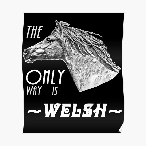 The Only Way is Welsh - Welsh Pony Appreciation Poster