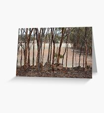 Mallet Woodland Greeting Card