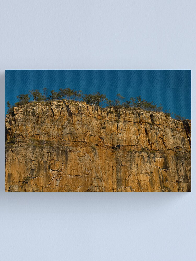 Alternate view of Top Heavy Canvas Print