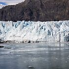 Alaska Glaciers Too by EloiseArt