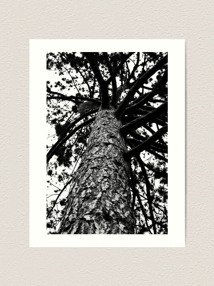 Alternate view of Monochrome Tree Art Print